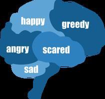 头脑-情绪